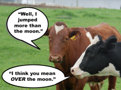 cowmoon